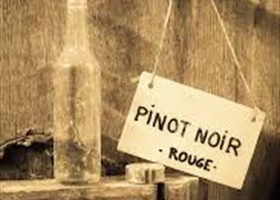 Around the World With Pinot Noir tasting Notes courtesy of Ken Bracke, Sommelier